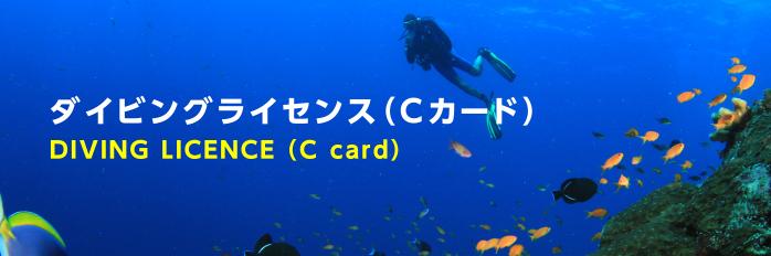 ダイビングライセンス(Cカード)DIVING LICENCE(C card)